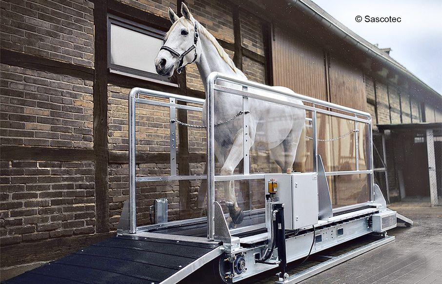 Siemens technology enables efficient exercising for horses
