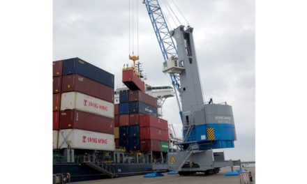 New Eco-Efficient Habor Crane for Port of Trieste